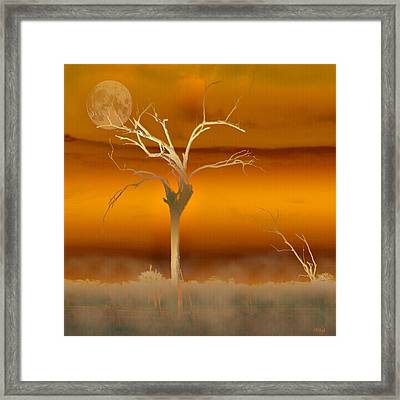 Night Shades Framed Print by Holly Kempe