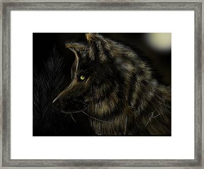 Night Silent Wolf Framed Print