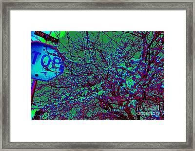 Night Tree Framed Print by Chuck Taylor
