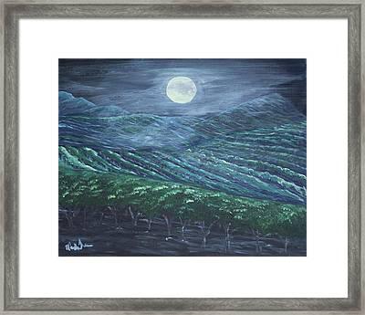 Night Vineyard Framed Print