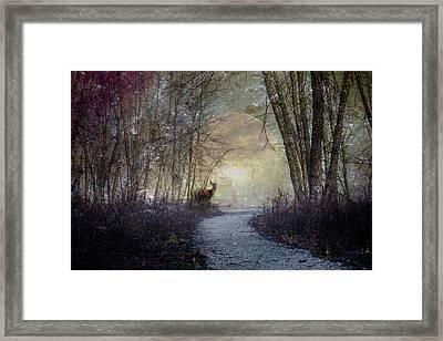 Night Watch Framed Print by Debra and Dave Vanderlaan