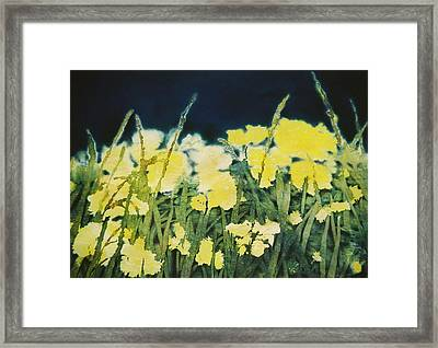 Night Watch Framed Print by Shirley McMahon