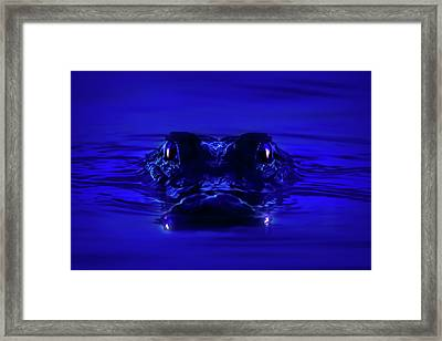 Night Watcher Framed Print by Mark Andrew Thomas
