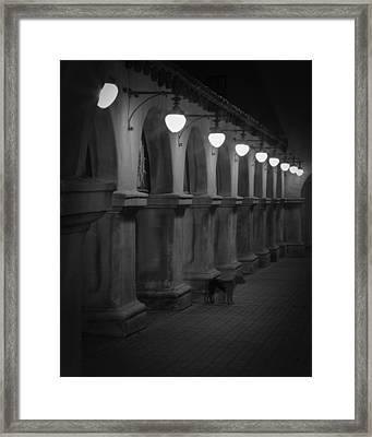 Night Watchman Framed Print
