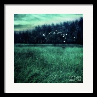 Phantasie Photographs Framed Prints
