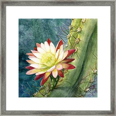 Nightblooming Cereus Cactus Framed Print by Marilyn Smith