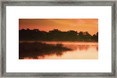 Nightfall Ducks Framed Print