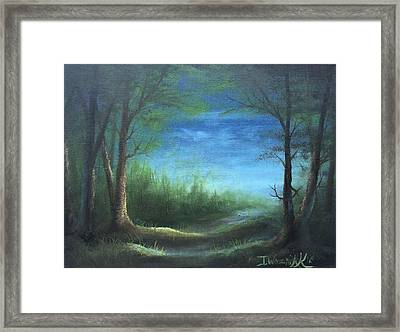Nightfall In The Boggs  Framed Print