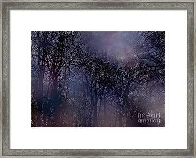 Nightfall In The Woods Framed Print by Sandy Moulder