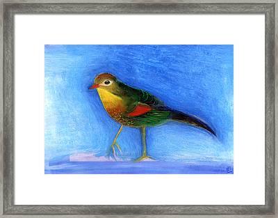 Nightingale Light Framed Print by Nancy Moniz