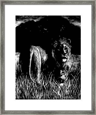Nightshade Framed Print