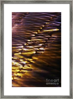 Nighttime Reflections Framed Print