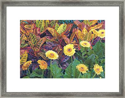 Nine Daisies Framed Print