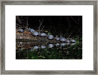 Nine In A Row Framed Print