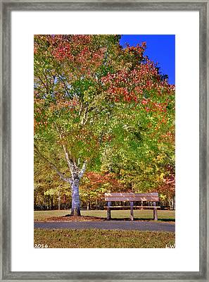 Ninety Six National Historic Site Bench In The Fall Framed Print by Lisa Wooten