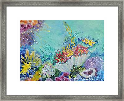 Ningaloo Reef Framed Print