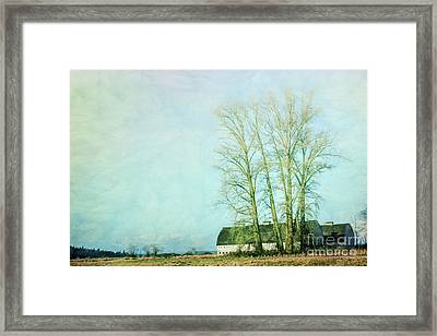 Framed Print featuring the photograph Nisqually Barns by Jean OKeeffe Macro Abundance Art