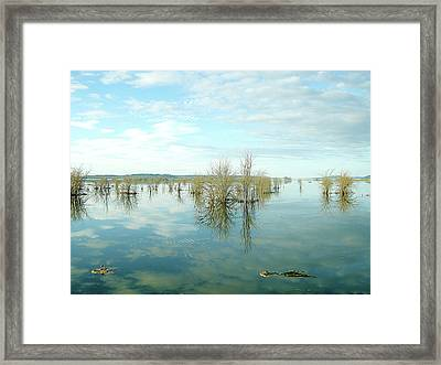 Nisqually High Tide Framed Print