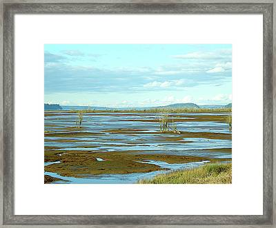 Nisqually Looking North Framed Print