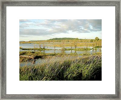 Nisqually Tide Coming In Framed Print
