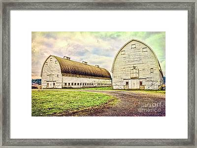 Nisqually Twin Barns Framed Print