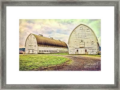 Nisqually Twin Barns Framed Print by Jean OKeeffe Macro Abundance Art