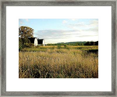 Nisqually Two Barns Framed Print