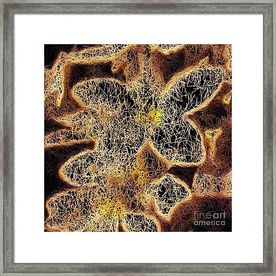 Framed Print featuring the digital art Nite Nite Plumeria  by Jindra Noewi