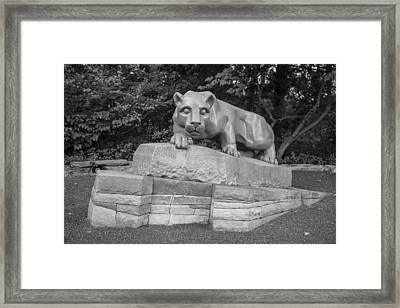 Nitty Lyon  Framed Print