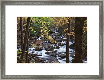 No Break Of Light Framed Print