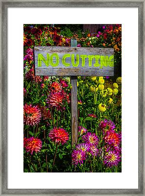 No Cutting Sign In Garden Framed Print by Garry Gay