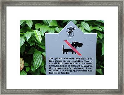 No Dogs Framed Print by Jessica Rose