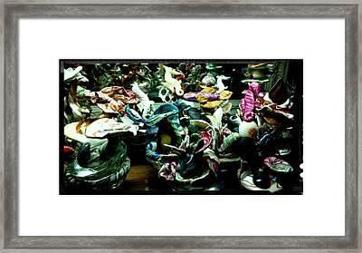 No Maintenance Aquarium Close Up Framed Print