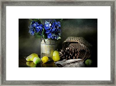 No More Blues Framed Print by Diana Angstadt