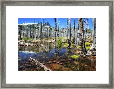 Framed Print featuring the photograph No Name Pond by Cat Connor