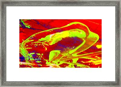 No One Kisses A Sleeping Frog Framed Print by Bruce Combs - REACH BEYOND