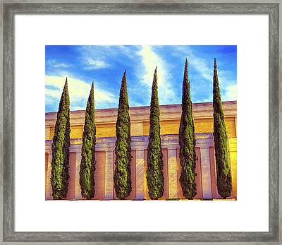No Ordinary Days Framed Print by Wendy J St Christopher