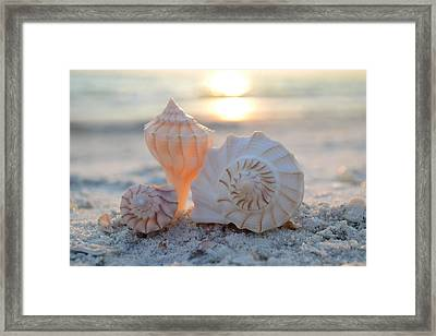 Framed Print featuring the photograph No Place Like Home by Melanie Moraga