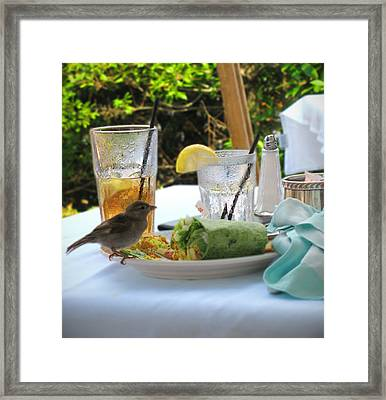 No Reservations Required Framed Print by Colleen Kammerer
