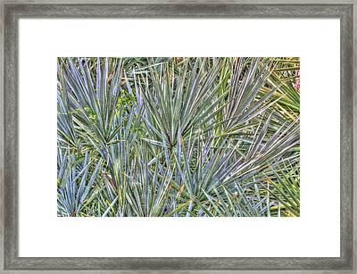 No Seating Available Framed Print by John Rowe