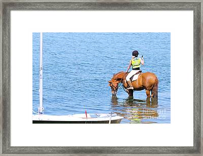 No Signal Framed Print by Terri Waters