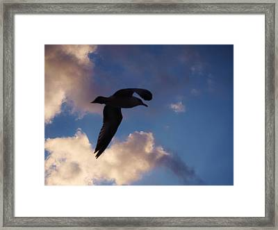 No Sky Is Heavy If The Heart Be Light. Framed Print