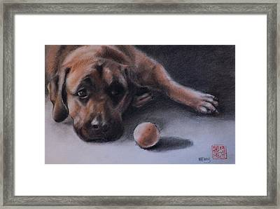 No Time To Play Framed Print by MaryAnn Cleary