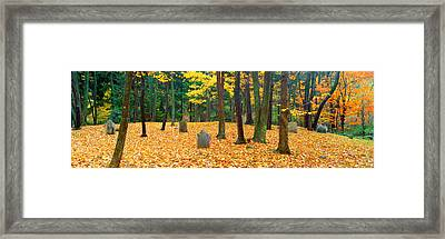 Noah Phelps Grave In Revolutionary War Framed Print by Panoramic Images