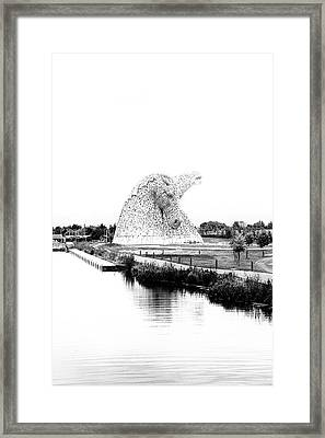 Noble. Framed Print by Angela Aird