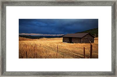 Noble Meadow Framed Print by Thomas Zimmerman