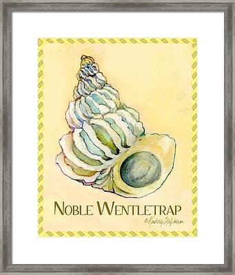 Noble Wentletrap Framed Print by Kimberly McSparran