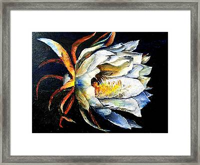 Nocturnal Desert Blossom Framed Print