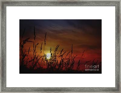 Nocturnal Sunset Framed Print