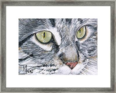 Noel Framed Print by Mary-Lee Sanders